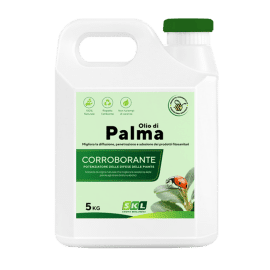 Foto Palm oil