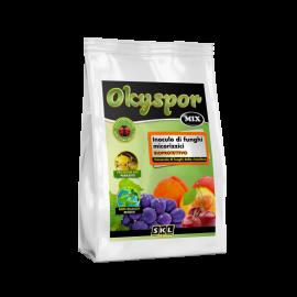 Foto Okyspor Mix PWD