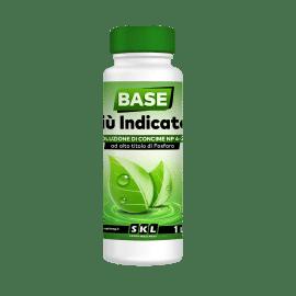 Foto Base + Indicator